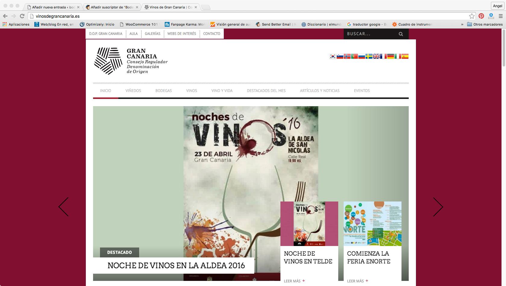 Nueva sección en la web de los vinos de la D.O. Gran Canaria