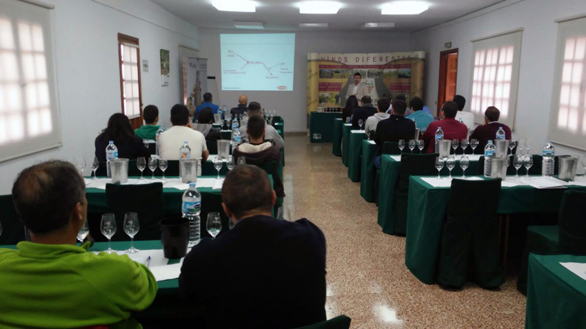 La D.O. Ycoden Daute Isora sigue impulsando la formación de bodegueros y viticultores