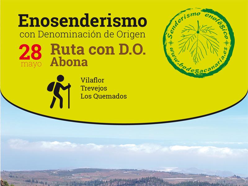 28 de mayo, enosenderismo con D.O. ruta Abona. Apúntate