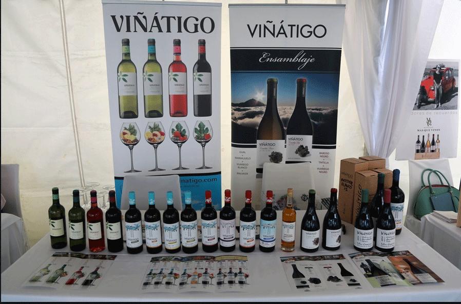 Satisfactoria experiencia de Viñátigo en el encuentro Exvigas 2016