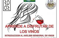 Aprendiendo a disfrutar del vino