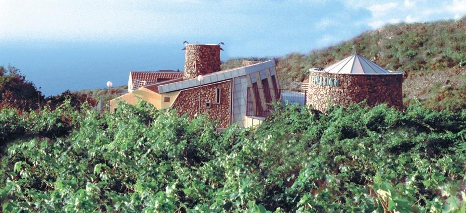 Bodegas Viñátigo celebra la VIII Cata de Uvas y Vinos de Canarias este 2 de septiembre