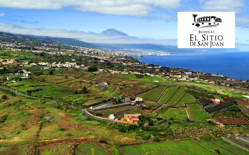 Bodega con D.O.P. Islas Canarias. El Sitio de San Juan