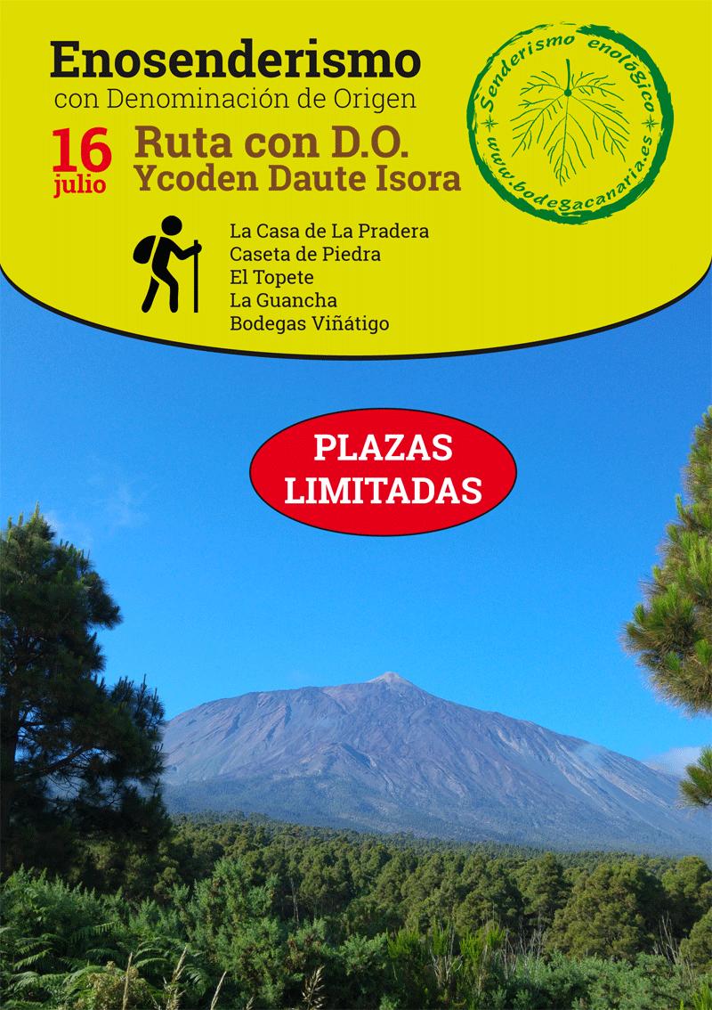 Nueva ruta de Enosenderismo con D.O. El próximo 16 de julio Ycoden Daute Isora