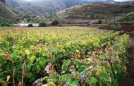 Solicitud online de las subvenciones agroambientales del PDR