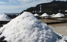 I Concurso de Sal Marina de Canarias