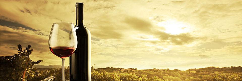 Un nuevo estudio internacional reafirma los beneficios únicos del vino en la salud