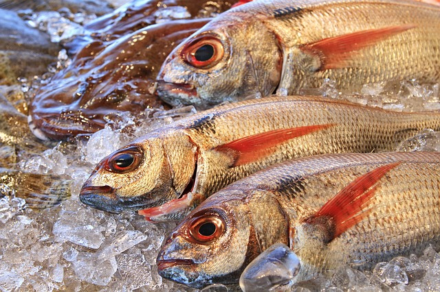 Diploma de Experto Profesional en Comercialización de Productos Pesqueros y Acuícolas por la UNED