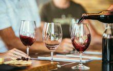 Un estudio científico avala los beneficios del vino para el cerebro