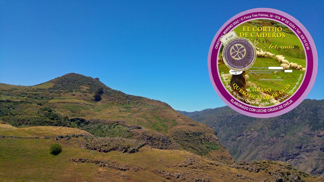 El Mejor Queso de Canarias 2018