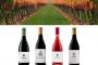 Seminario de análisis sensorial de vinos