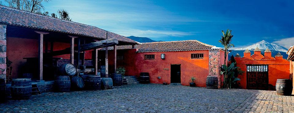 Degustación de Vinos de Tenerife
