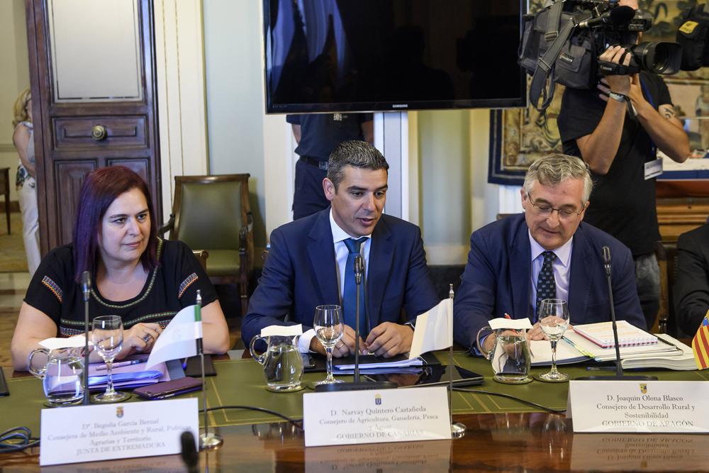 El Gobierno de Canarias en la Conferencia Sectorial de CCAA