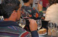 La ULL refuerza su trabajo con el sector vitivinícola canario