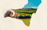 El V FORO DE AGROECOLOGÍA Y BIODIVERSIDAD EN CANARIAS
