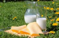 El consumo de lácteos enteros reduce la tasa de enfermedad cardiovascular