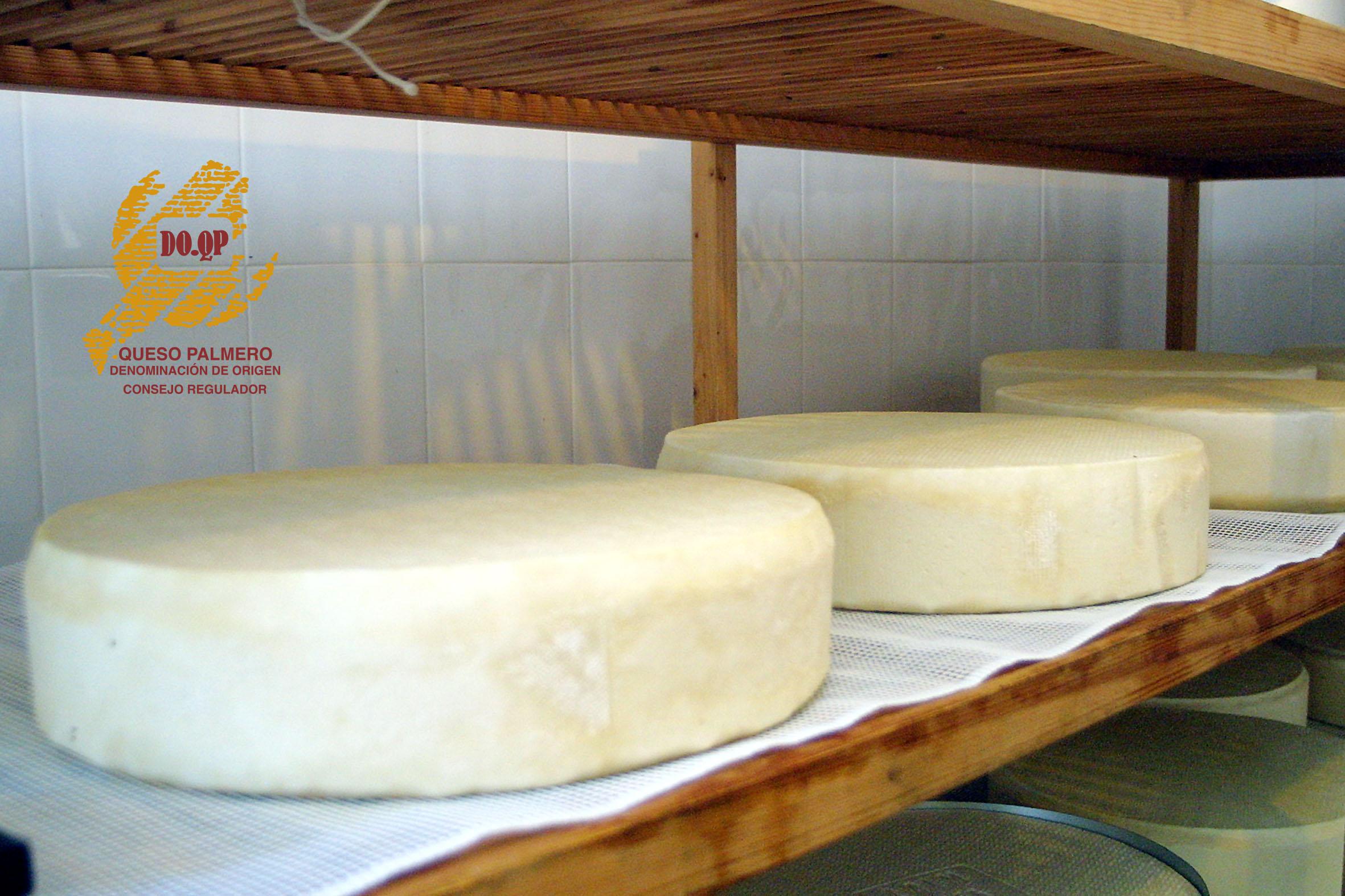 """El """"Queso de Manada"""", el queso de cabra más grande del mundo."""