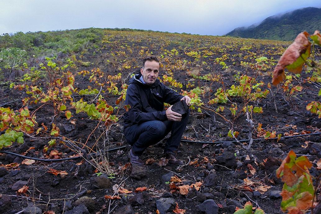 El 'Master of Wine' David Forer destaca la identidad única de los vinos de El Hierro
