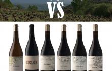 Originalidad autóctona en la Vinoteca El Gusto por El Vino. Enero 2019