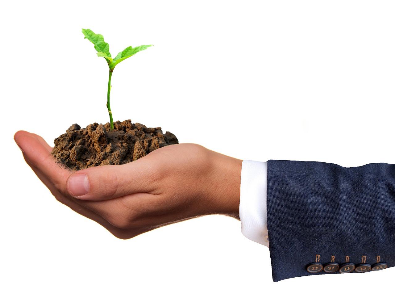 El Gobierno de Canarias oferta 50 cursos formativos para jóvenes agricultores y ganaderos para 2019