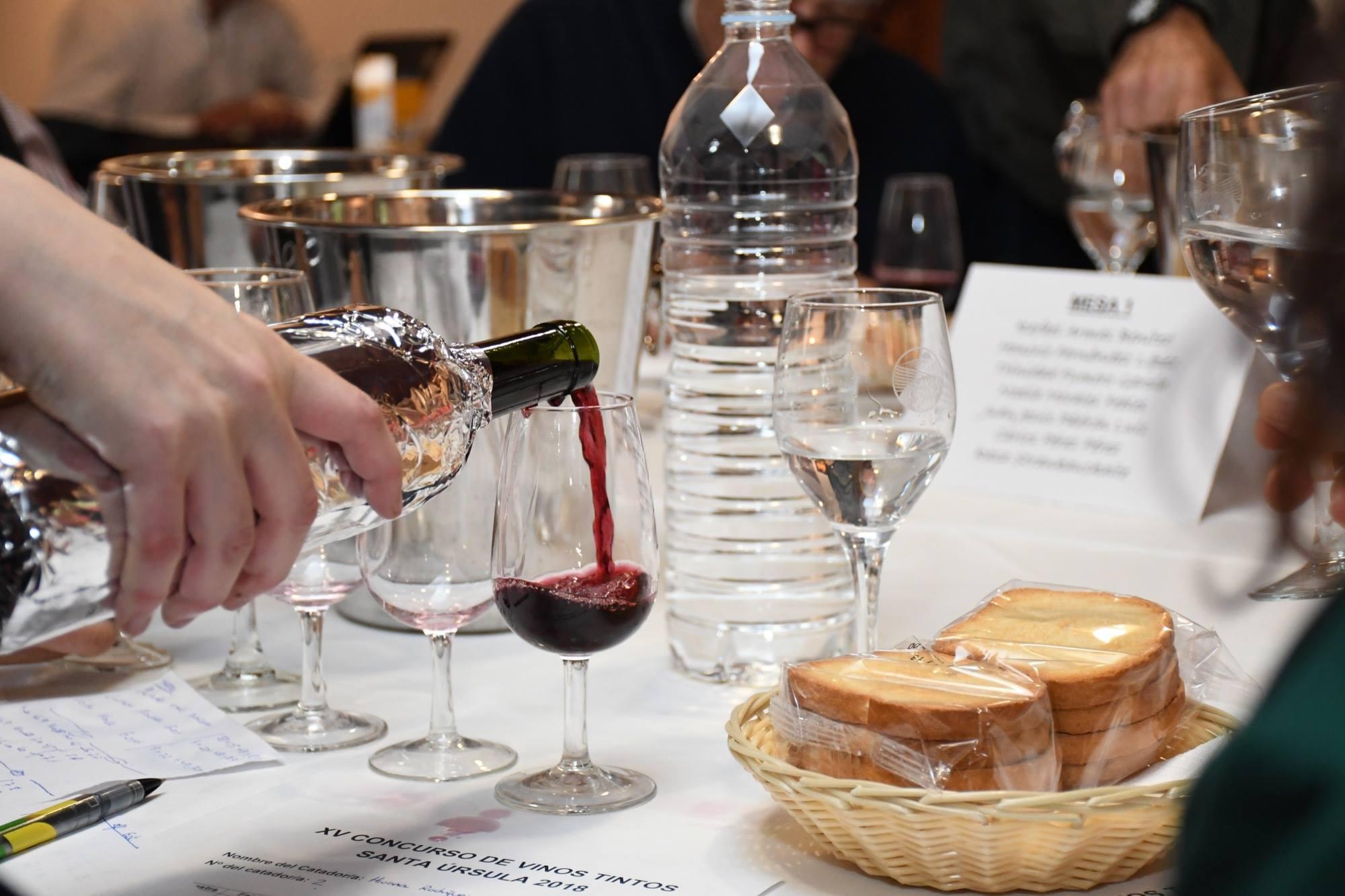 Concurso de vinos locales Santa Úrsula