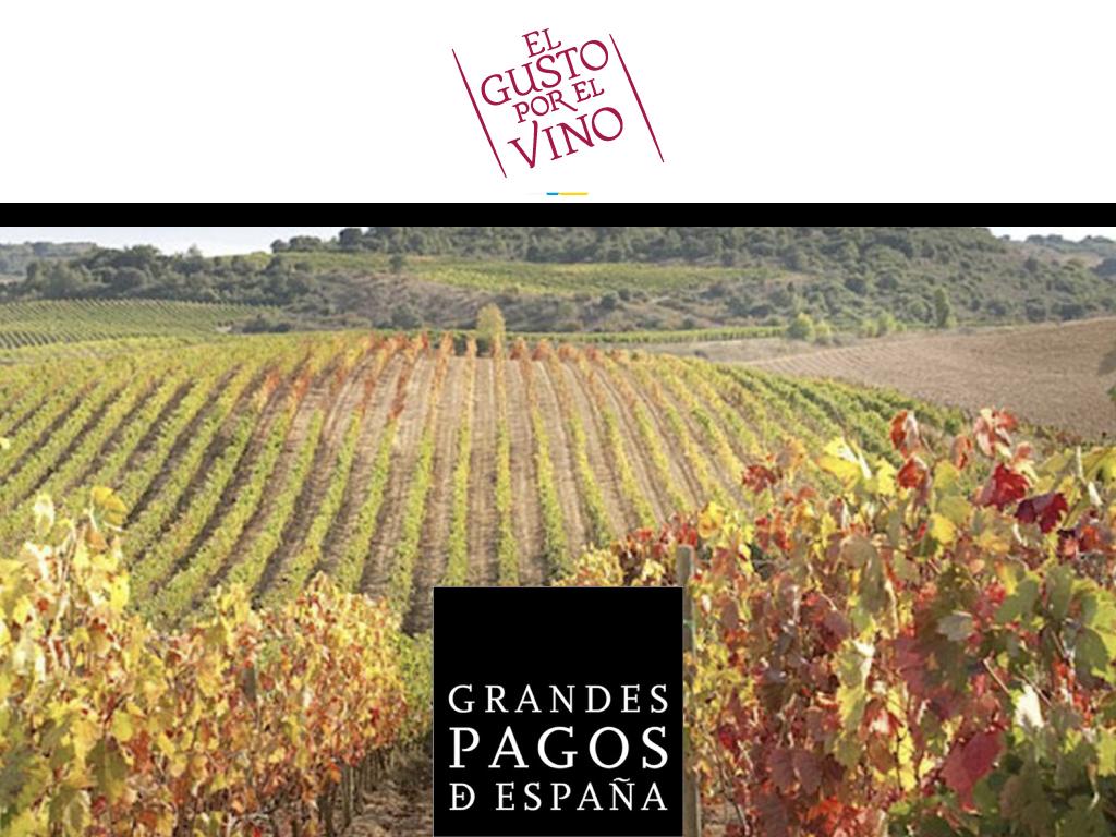 Grandes Pagos de España. Cata de lujo de la mano de El Gusto por El Vino