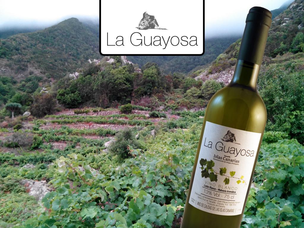 La Guayosa Blanco, el resultado épico de una viticultura intrépida