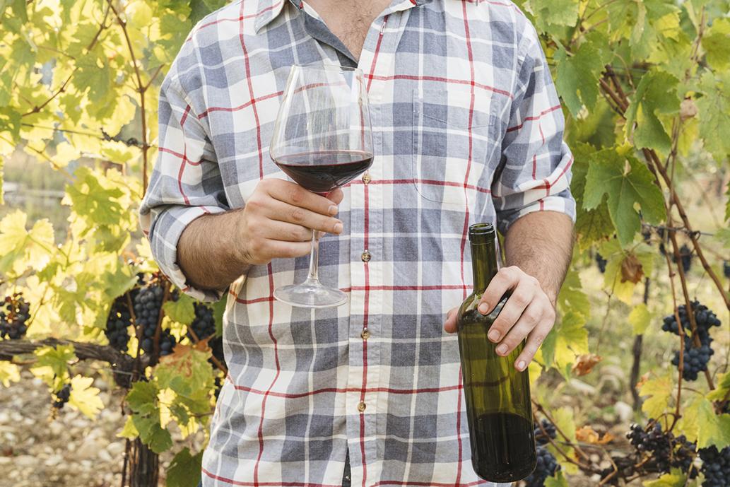 La DO Vinos de Gran Canaria finalizó el año con uvas de una calidad extraordinaria