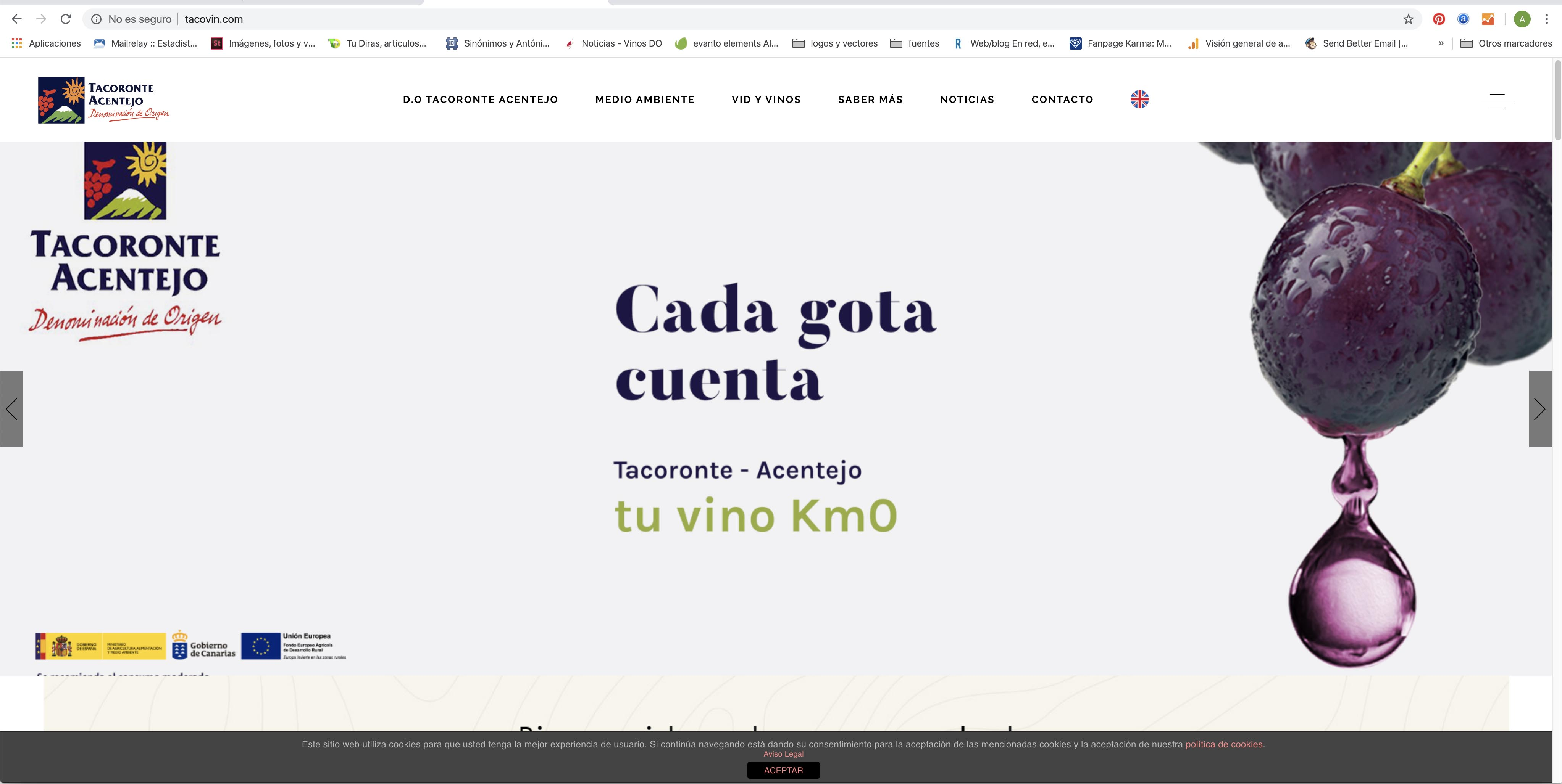 Tacoronte-Acentejo renueva su página web