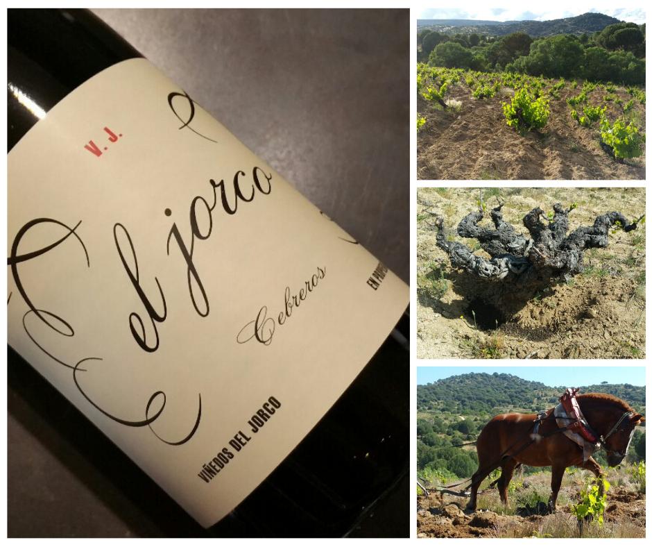 El Jorco, vino de muy limitada producción, novedad en la Vinoteca El Gusto por el Vino