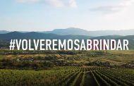 El sector del vino muestra su compromiso y solidaridad ante el coronavirus
