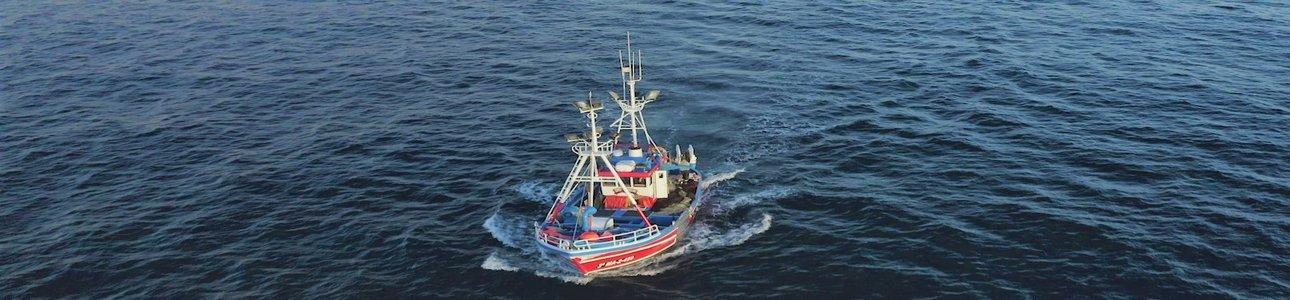 Tenerife descubre al mundo la alta calidad ecológica y sostenible de la pesca y gastronomía de sus túnidos en el II Encuentro de los Mares