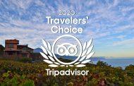 Bodegas Monje recibe el premio Travellers Choice Awards 2020 de TripAdvisor
