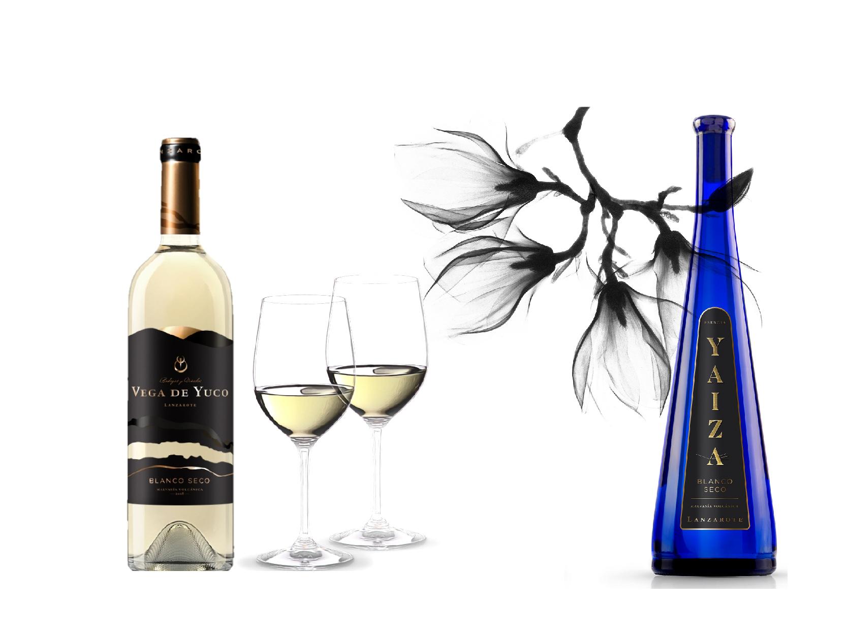 Bodegas Vega de Yuco obtiene 2 medallas en los prestigiosos Premios 'Decanter World Wine Awards'