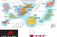CANARY WINE ACADEMY,  LA MAYOR PLATAFORMA DE CONOCIMIENTO DE LOS VINOS CANARIOS