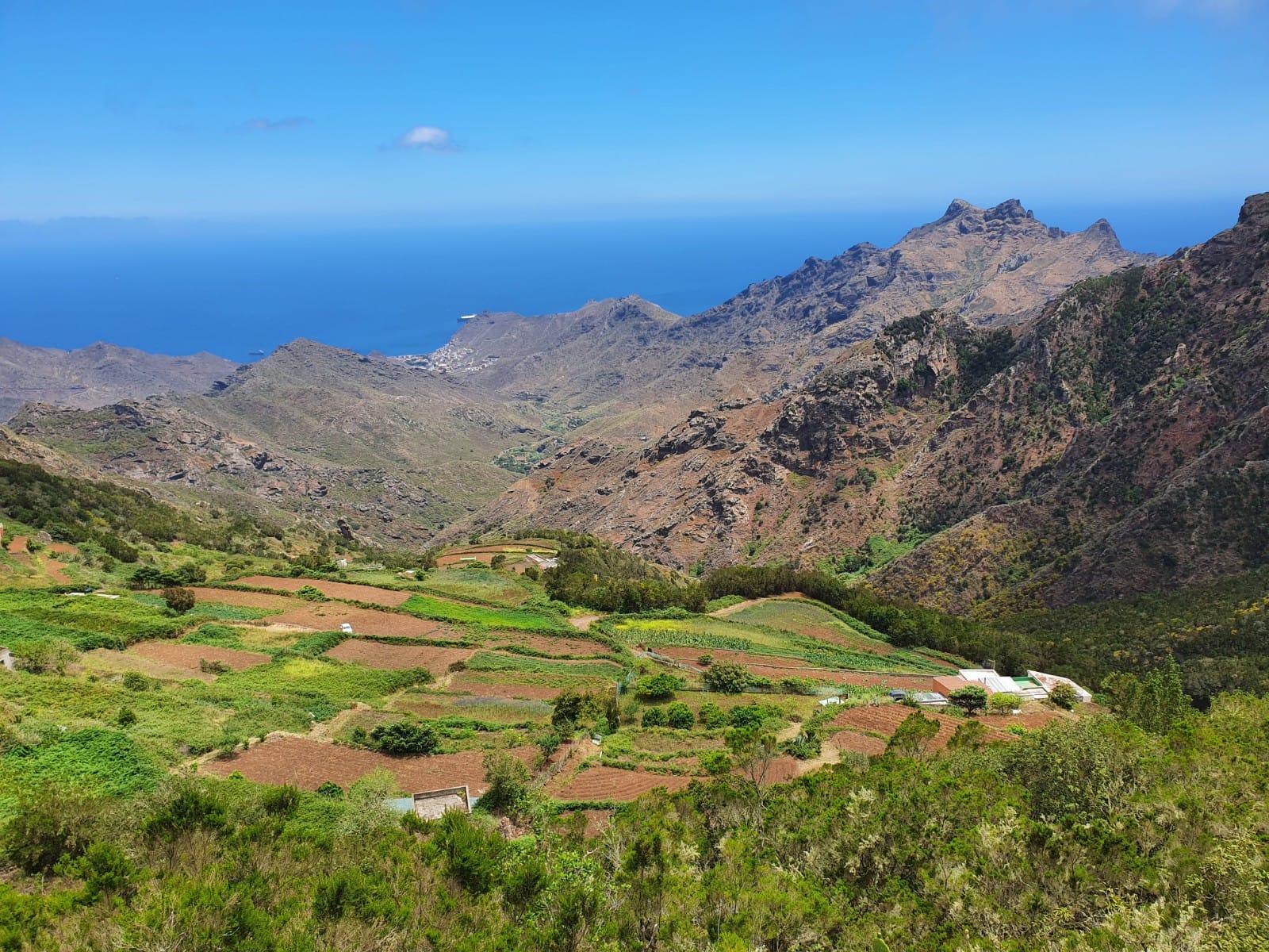 El ICIA investiga la regeneración de suelos degradados en Canarias para incrementar la resiliencia al cambio climático