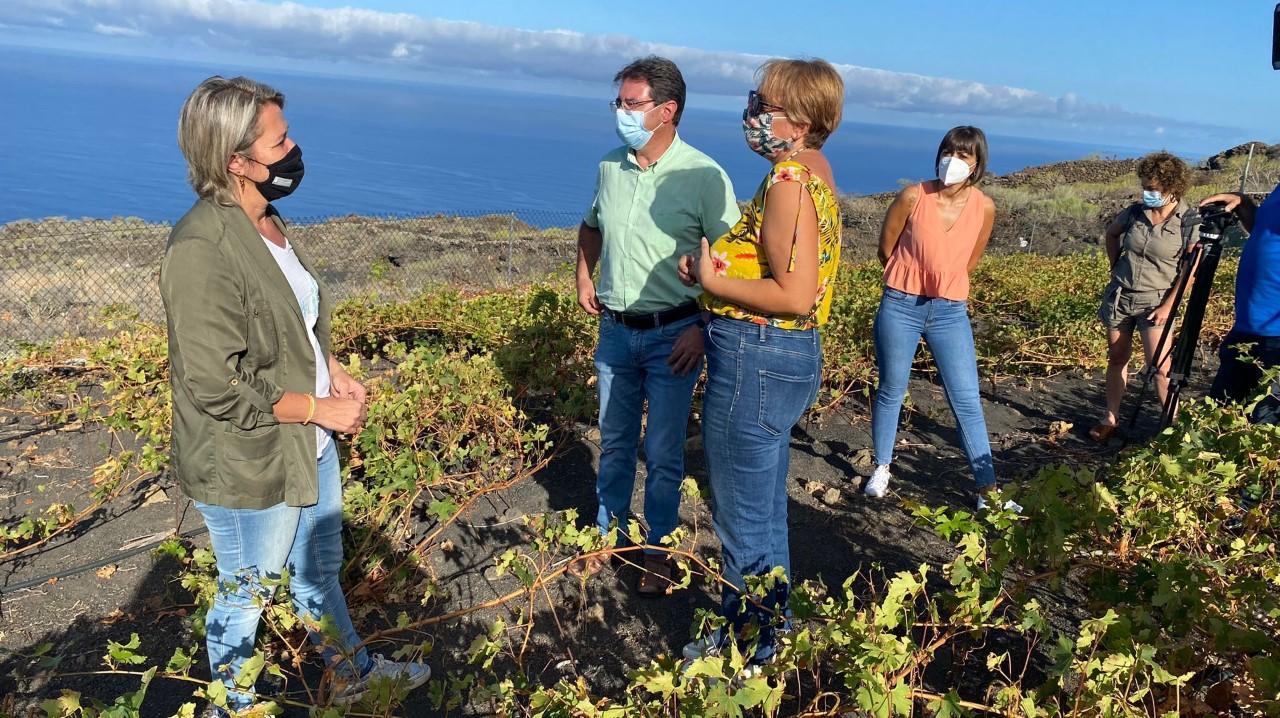 Vanoostende apela a la importancia del seguro agrario durante su visita a los viñedos afectados por la ola de calor